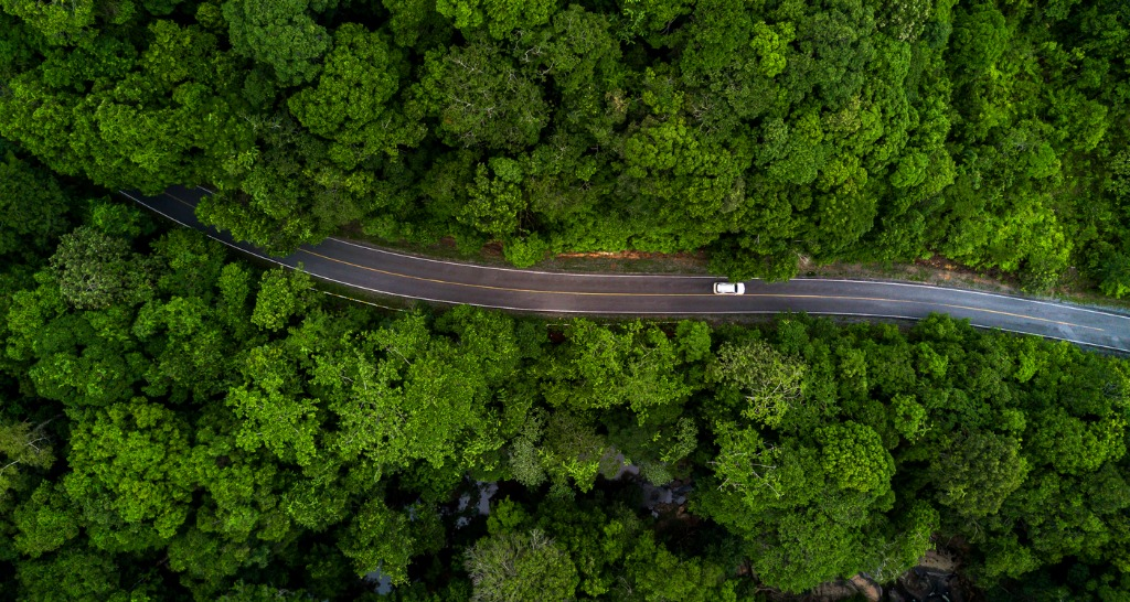 aerial-view-asphalt-road-and-green-forest-forest-road-going-through-picture-id1213148829